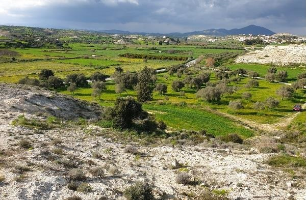 LAND FOR SALE IN LARNACA ANAFOTIDA